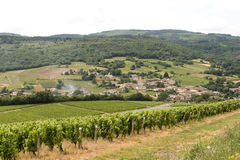 Vineyards and village in Burgundy royalty free stock image
