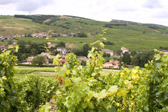 Vineyards and village in Burgundy Stock Photo