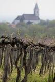 Vineyards and village church at Lake Balaton royalty free stock image