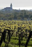 Vineyards and village church at Lake Balaton Stock Images