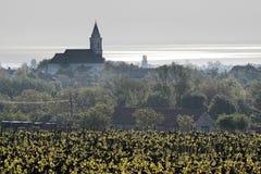 Vineyards and village church at Lake Balaton Stock Photo