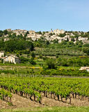 Vineyards and Villages of Provence Stock Image