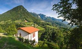 Vineyards Villas And Vistas Stock Photos