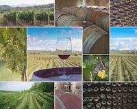 Vineyards and Wineries. Colorful collage of  vineyards and wineries images Stock Photos