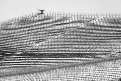 Vineyards, winter snowy view. Black and white photo royalty free stock photography