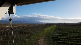 Vineyards winter sunny day royalty free stock photography