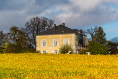 Vineyards and Yellow Buidling Royalty Free Stock Photo