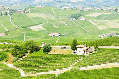 Vineyars near Barolo Stock Photography