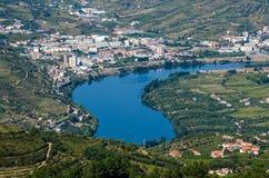 Vineyars no vale de Douro imagem de stock