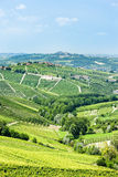 Vineyars, Piedmont, Italy Stock Photo