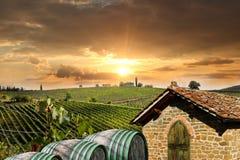 Vineyeard σε Chianti, Τοσκάνη, Ιταλία, διάσημα εδάφη Στοκ Φωτογραφίες
