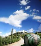Vineyeard dans Chianti, Toscane, Italie, cordons célèbres photographie stock libre de droits