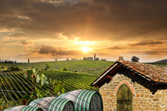 Vineyeard dans Chianti, Toscane, Italie, terres célèbres photos stock