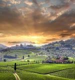 Vineyeard en Chianti, Toscana, Italia, pistas famosas Foto de archivo libre de regalías