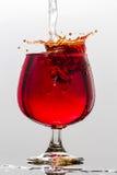 Vinfärgstänk Royaltyfri Foto