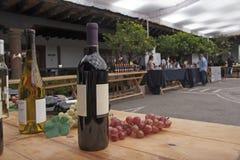 Vinfestival royaltyfri bild