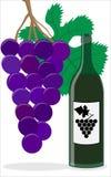 Vinflaska och druva Royaltyfri Bild