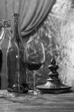Vinflaska och exponeringsglas Arkivbild