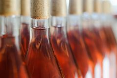 Vinflaskor/Cabernet Franc Rose flaskor av vin i rader i ungersk vinkällare arkivbilder