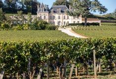Vingård av chateauen Fonplegade - springbrunnen för namnet av överflödet härleddes formligen från den historiska 13th thaen för å arkivbilder