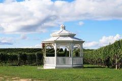 vingård för gazebo ii Arkivfoton