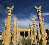 vingård för Kalifornien daroushnapa arkivfoto
