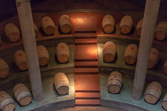 vingård för salentein för argentina grottamendoza arkivbilder