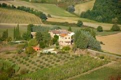 Vingård i Tuscany, Italien Arkivbilder