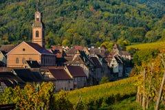 Vingård och townscape Kaysersberg, Alsace i Frankrike fotografering för bildbyråer