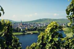 Vingårdar av den Moselle dalen i Tyskland arkivbild