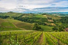 Vingårdar av Langhe, Piedmont, UNESCOvärldsarv arkivbild