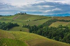 Vingårdar av Langhe, Piedmont, UNESCOvärldsarv royaltyfria bilder