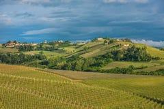 Vingårdar av Langhe, Piedmont, UNESCOvärldsarv Royaltyfri Fotografi