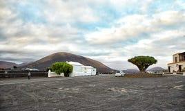 Vingårdar i La Geria, Lanzarote ö Royaltyfri Fotografi