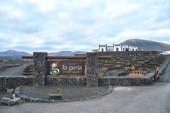 Vingårdar i La Geria, Lanzarote ö Arkivbild