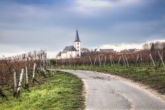 Vingårdar med kyrkan i Hochheim, Tyskland Royaltyfria Bilder