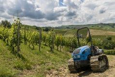 Vingårdar med traktoren av Garbelletto Piedmont royaltyfri fotografi