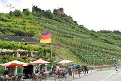 Vingårdar och restaurang under den Metternich slotten Arkivfoton