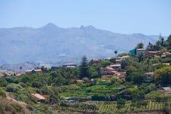 Vingårdar runt om Bandama Royaltyfri Fotografi