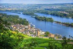 Vingårdlandskap med Rhine River, Ruedesheim i Hessen, Tyskland arkivbilder