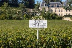 Ving?rd av chateauen Fonplegade - springbrunnen f?r namnet av ?verfl?det h?rleddes formligen fr?n den historiska 13th thaen f?r ? royaltyfria foton