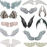 vingar Arkivbilder