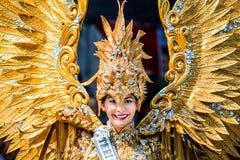 Vingar av guld Royaltyfria Foton