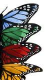 vingar för vertical för fjärilshöger sidabunt Royaltyfri Foto