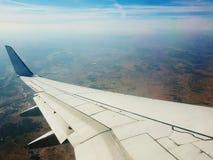 Vingar som flyger Royaltyfri Bild