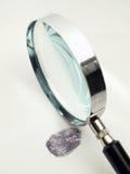 Vingerafdruk en meer magnifier Stock Afbeelding