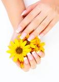 Vingernagels en bloemen Royalty-vrije Stock Afbeeldingen