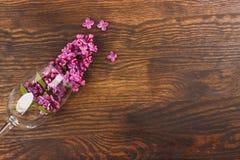 Vinglas med violetta lilor Royaltyfria Foton