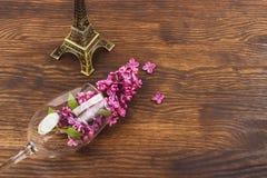 Vinglas med violetta lilor Royaltyfri Fotografi