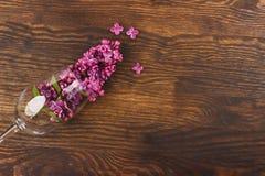 Vinglas med violetta lilor Arkivbilder